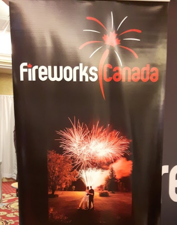 Having a professional fireworks show at your wedding seems like a really show-stopping idea!